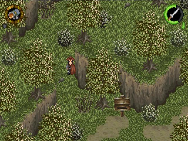 Nuevo Bosque del Monte Buciero